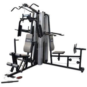 Multi Station Home Gym