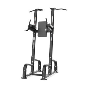 Reeplex commercial Pull Up Dip Power Tower
