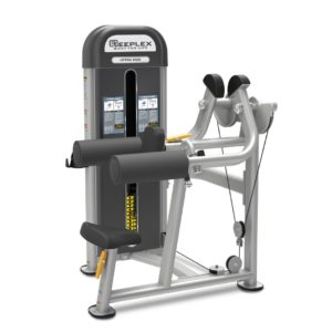 Commercial Lateral Raise Machine